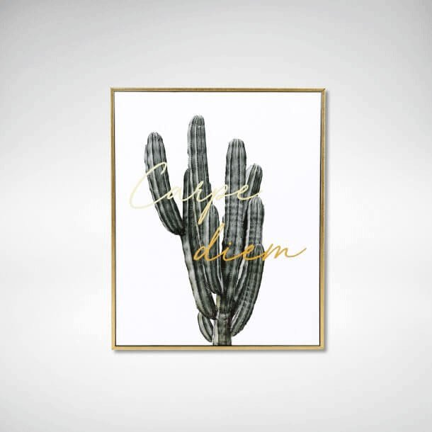 Cactus Poster Design for Bedroom - Comfort Furniture