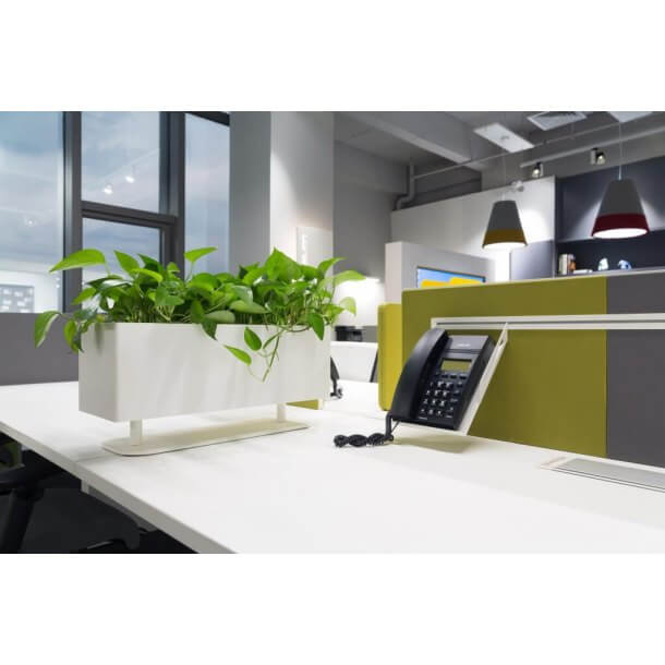 Cool Accessories for Modern Office Interior - Comfort Furniture