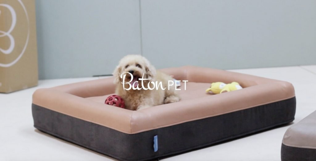 Baton Pet Bed for Your Furry Kids at Home - Comfort Furniture
