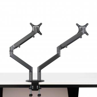 Whipp Monitor Arm - Dual