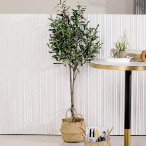 Tree - Olive H1200