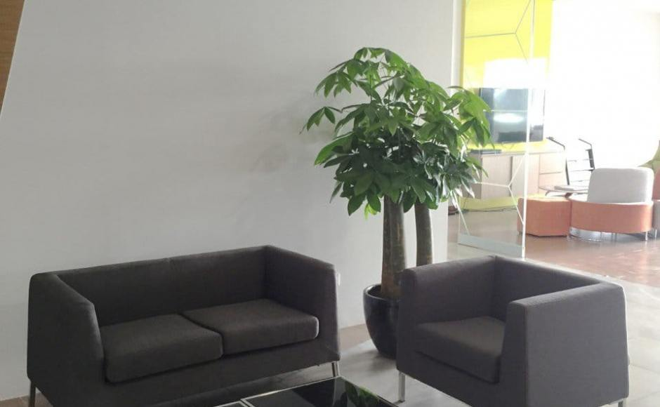 Wong Fong Engineering Works Pte Ltd - 79 Joo Koon Circle | Product Seen: [Farrer 1,2 Seater Sofa]<br />