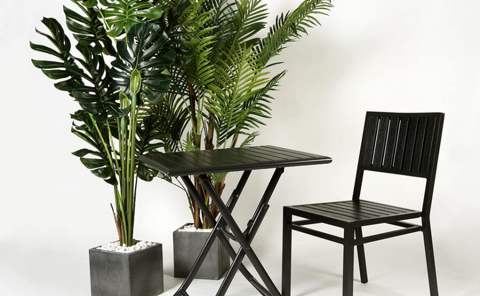 [Tree - Hawaii Palm H1700, Tree - Monstera H1600, Hiro Outdoor Sidechair & Hiro Outdoor Folding Table]