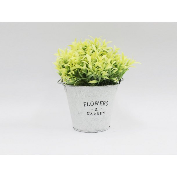 Plant Tin Yellow